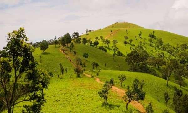 Sẽ có bảng chỉ dẫn suốt tuyến trekking Tà Năng - Phan Dũng