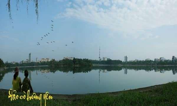 Độc đáo đảo cò đẹp ít người biết giữa thành phố Hưng Yên.