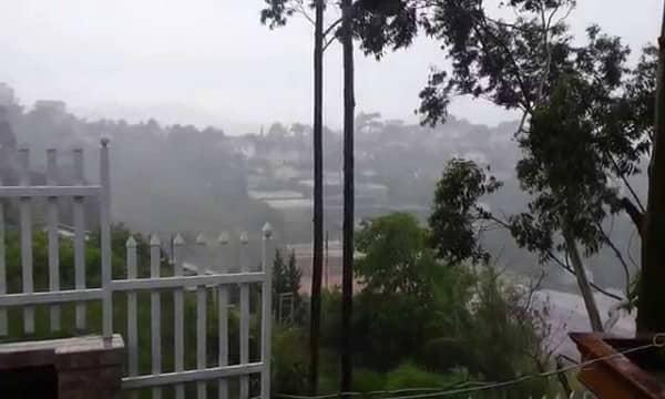 Đà Lạt: Mưa kèm gió mạnh, nhiều cây xanh ngã đổ.