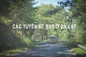 Các Tuyến Xe Bus Đà Lạt
