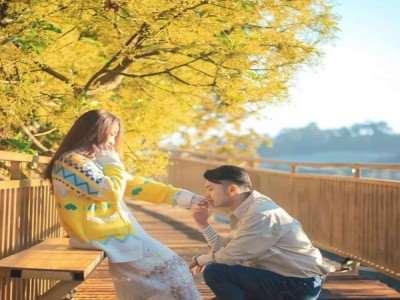 Đà Lạt đẹp lịm tim với con đường Hàn Quốc