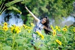 [ Phát hiện ] vườn hoa hướng dương đẹp mê mẩn cách Sài Gòn chỉ 35km