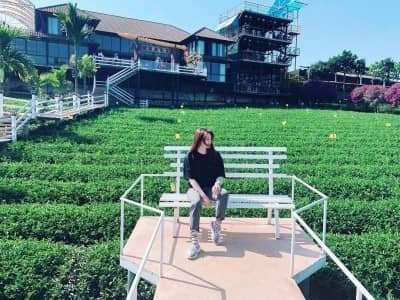 Ốc đảo trà xanh đẹp như thiên đường mới ở Đà Lạt