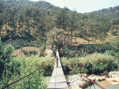 Cầu treo gỗ Đà Lạt tưởng chừng chỉ có trong phim