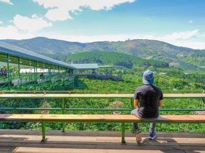 Mê Linh Coffee Garden - quán cà phê view xịn ngoại ô Đà Lạt