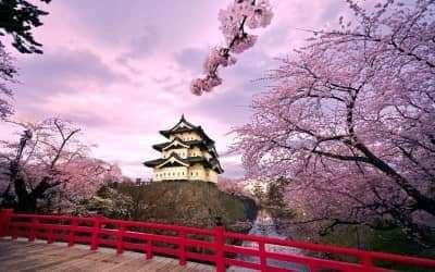 NHẬT BẢN (NIKKO - TOKYO - YOKOHAMA - YAMANASHI - NÚI PHÚ SỸ)