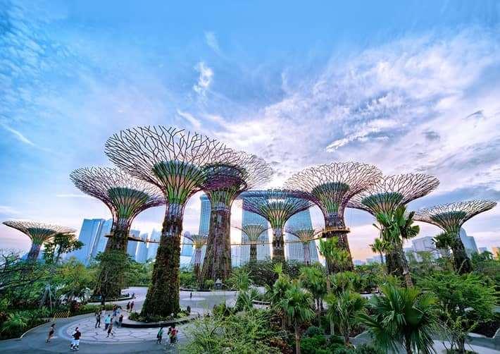 Vườn siêu cây Garden by the Bay - Singapore
